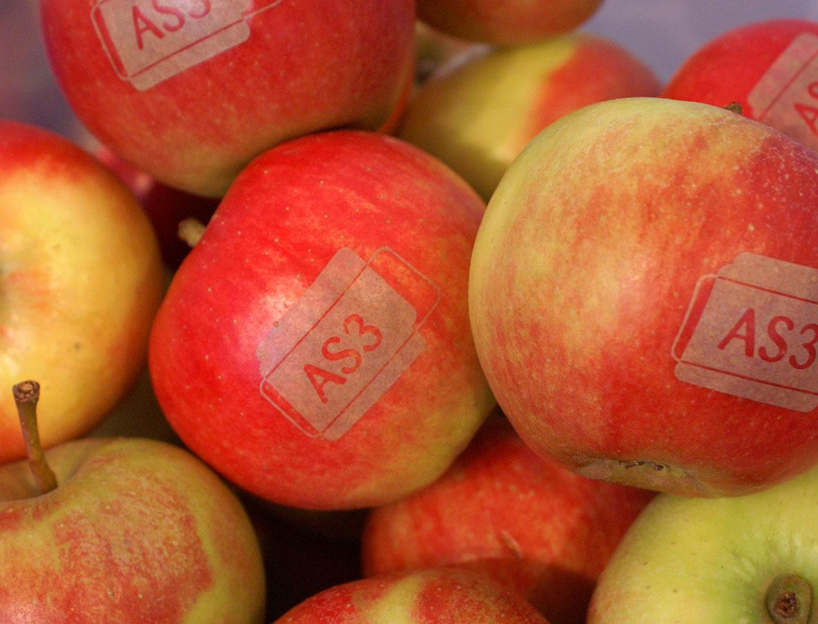 Special designede æbler til messe