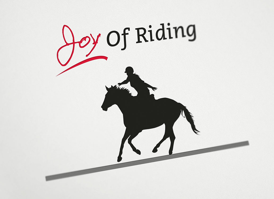 joy-of-riding-2